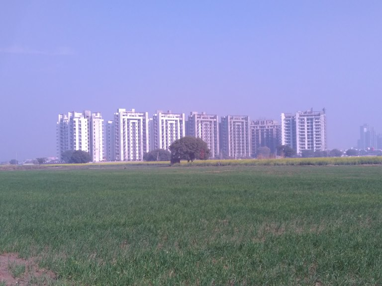 Satya Hermitage, Dwarka Expressway
