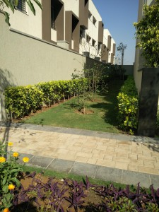 Sobha international city row houses No part of land left uncovered.