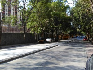 Tree lined walkways of Hiranandani Gardens, Maple Heights, Hiranandani Zen location