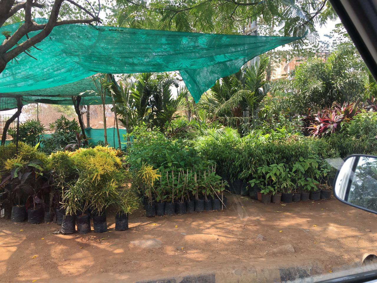 Flower market @ Kukatpally, Hyderabad