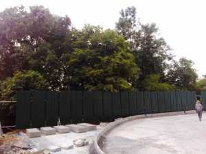 Peripheral green cover, protected in the backyard at Brigade Cosmopolis