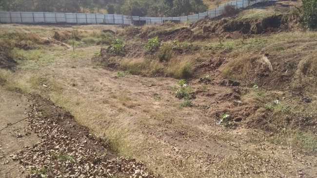 Site where Sobha Elanza is to come up